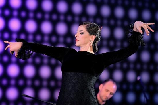 Flamenco-Zertuche